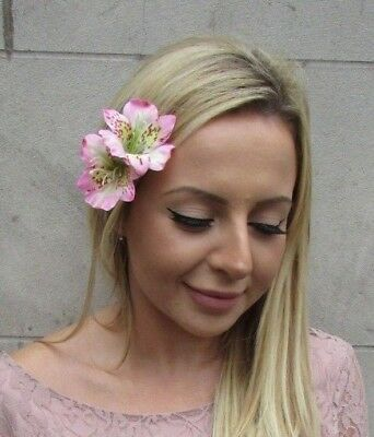 Double Baby Light Pink Amaryllis Lily Flower Hair Clip Fascinator Orchid 6151