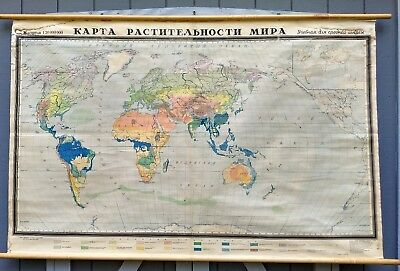 Vintage World vegetation map School chart industrial hanging wall map Russian