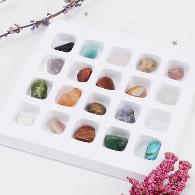 MagiDeal Earth Science Spielzeug für Kinder Rock & Mineral Collection (20