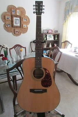 Martin Sigma Dm 2 Acoustic 6s Guitar With Soft Case 16500 Picclick
