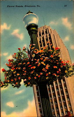 Postcard Flower Stands Allentown Pennsylvania Linen Unused