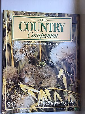 Country Companion Magazine #5. The Harvest Field