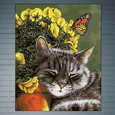 Sleeping Cat DIY Digital Oil Painting Paint By Number Canvas Home Room Decor