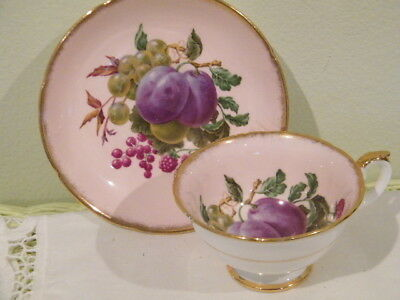 ROYAL GRAFTON FINE BONE CHINA md in ENGLAND TEA CUP, SAUCER FRUIT