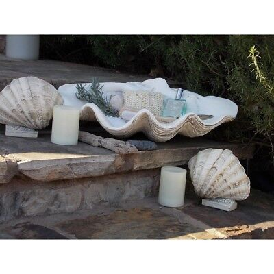 House Parts Large Clam Sea Shell Textured Gypsum Handcrafted Fossil Finish White
