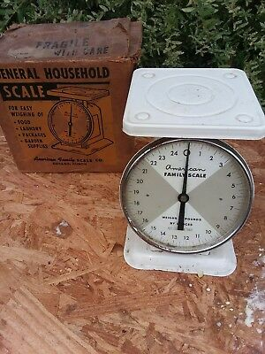 Vintage American Family Scale Co. General Household Scale