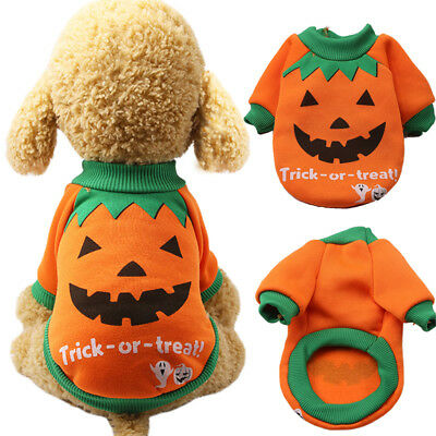 Pets Clothes Halloween Dog Christmas Costumes Witch Apparel Pumpkin Suit Moda