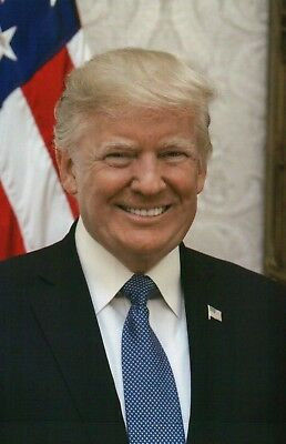 Official Portrait of U.S. President Donald Trump White House in 2017 -- Postcard