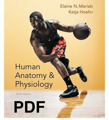 HUMAN ANATOMY AND Physiology Tenth 10th Edition- PDF ETextbook ...