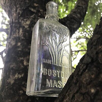Antique Bottle X-Zalia Beautiful Design Boston Mass
