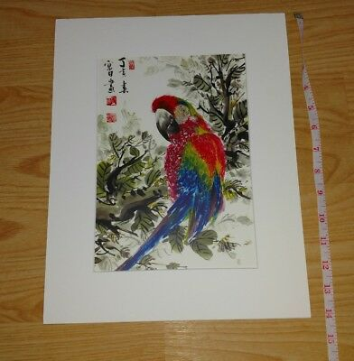 Matted Parrot Painting Asian 14 In. Signed Oriental birds NEW