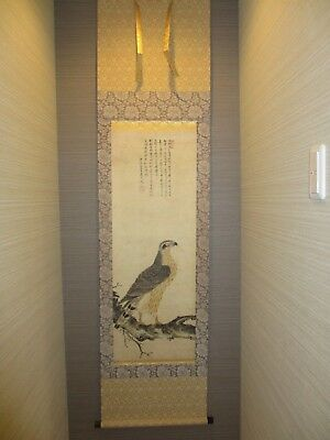 Japanese Hanging Scroll Kakejiku Toki Yorinori Bird Hawk Painting on silk w/ box