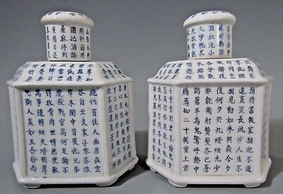 Fine Pair China Chinese RUO SHEN ZHEN CANG Porcelain Tea Canisters ca. 19th c.