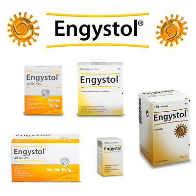 HEEL Engystol N Tablets Ampoules Homeopathic Remedies