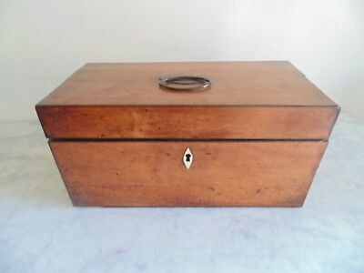 Early 19th Century Two division Tea Caddy