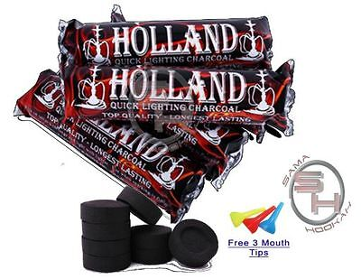 50 Piece Holland Charcoal Fast Easy Quick Lite Light Hookah Coal 5 Roll Incense