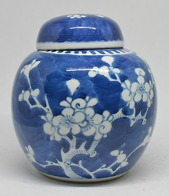 Chinese Blue and White Prunus Ginger Jar  ~ Dubble ring ~ 5.5'' Tall ~