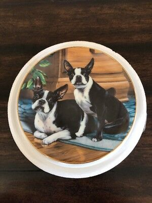 "Boston Terriers Collector Plate ""Wide-Eyed Duo"" by Dan Hatala - The Danbury Mint"
