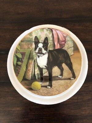 "Boston Terriers Collector Plate ""Tennis, Anyone?"" by Dan Hatala Danbury Mint"