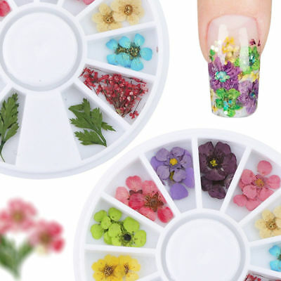 12 Color Real Dry Dried Flower Leaves 3D UV Gel DIY Manicure Tips Nail Art Decor