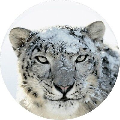 Mac OSX Snow Leopard Installer/Recovery Disk on USB