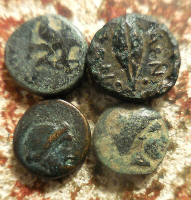 Lot of 4 VF Ancient Greek Coins! Bull, Grain etc. Largest 11 mm