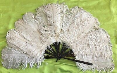 Antique white ostrich feather fan with tortiseshell handle