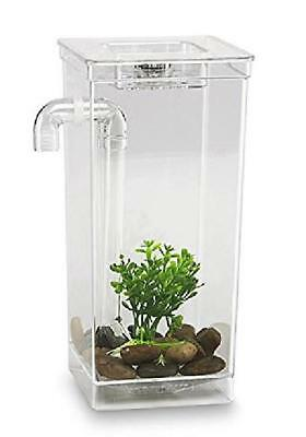 """4 3/4 x 6x 10"""" Fun Fish Tank with Cleans Itself the Perfect Low Maintenance"""