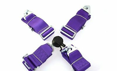 """Neuf  Sport Seat Belts Pp-Ps-044 Quick 4-Point 3"""" Purple"""