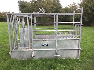 IAE cattle crush. excellent condition.