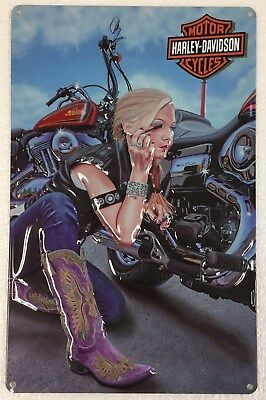 Ande Rooney HARLEY DAVIDSON FINISHING TOUCHES Tin Motorcycle Girl Garage Sign