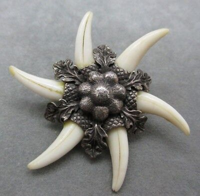 Antique Victorian Bavarian 835 Silver Charivari Fox Teeth Pin Brooch Lederhosen