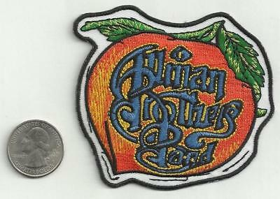 THE ALLMAN BROTHERS new Sew or Iron on PATCH rock band music cool coat jacket
