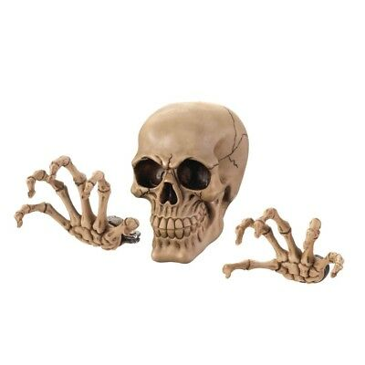Skull with Hands Skeleton Wall Decor