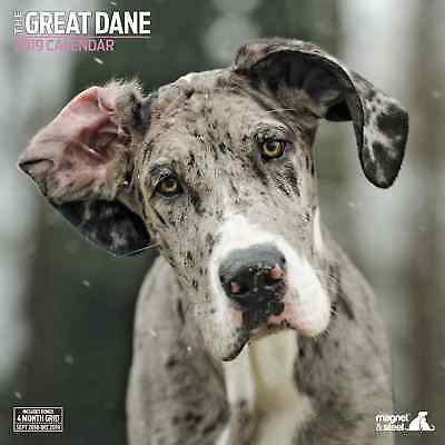 Great Dane Traditional 2019 Calendar