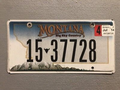 Montana Big Sky Country License Plate Random Letters/numbers