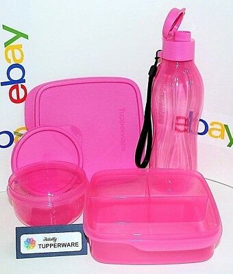 Tupperware Pink Lunch Set 16 oz Eco Bottle & 8 oz Ideal Bowl & Divided Bento Box