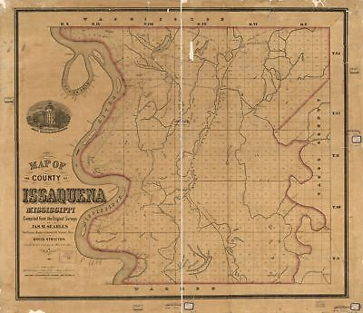 "20"" x 24"" 1873 Map Of The County Of Issaquena Mississippi"