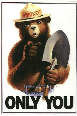PLEASE READ DESCRIPTION !!! Smokey the Bear, Forest Fires, Wildfires -- Postcard