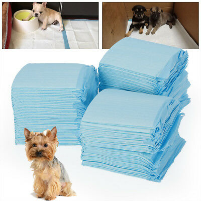 100 Disposable Underpad Cat Dog Pet Pee Training Potty Puppy Wee Pad Mat 33*45cm