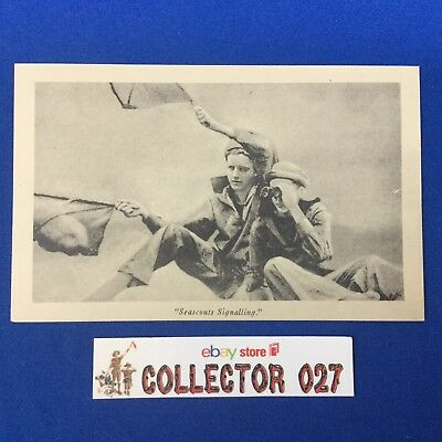 Official Boy Scout Post Card Seascouts Signalling
