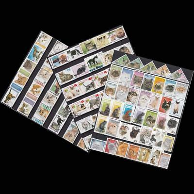 100pcs About Cats From The World Unused Post Mark Animal Postage Stamps Timbres
