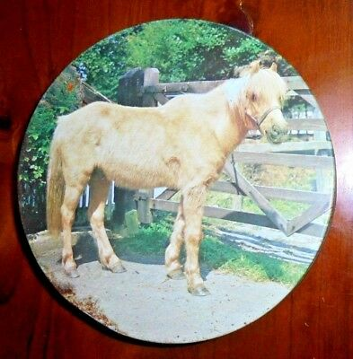 Old tin ~ Pony pictured on lid with horseshoes around the outside ~ England