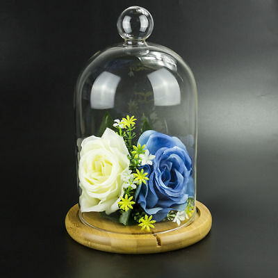 Large Glass Display Cloche Bell Jar Dome with Bamboo Tray Decoration Display DIY