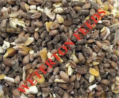 20Kg Mixed Corn layers pellets vegetable oil for hens poultry ducks chicken feed