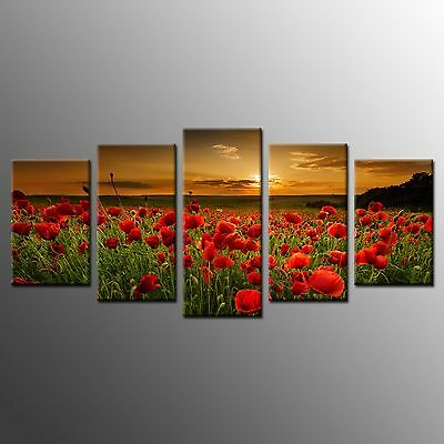 FRAMED Wall Art Home Room Decor Red Flowers Stretched Giclee Canvas Print-5pcs