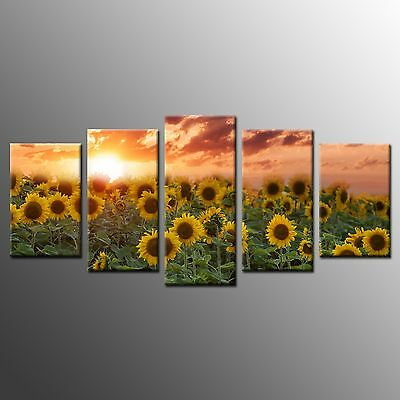 Modern Canvas Print Home Decor Wall Art Painting Picture-Sunflower No Frame 5pcs
