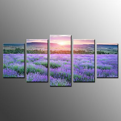 FRAMED Wall Art Home Room Decor Purple Flower Stretched Giclee Canvas Print-5pcs