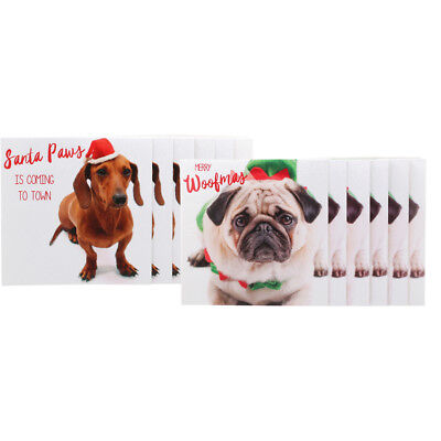 Christmas 12 Pack Square Dog Cards