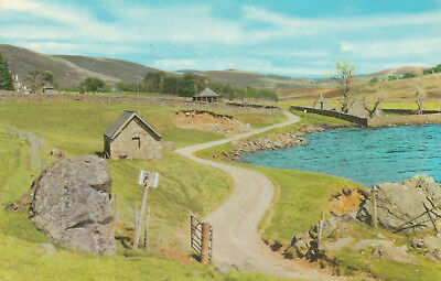 Mountain & River Glen Esk Picture Scotland c.1964 Printed Posted Postcard